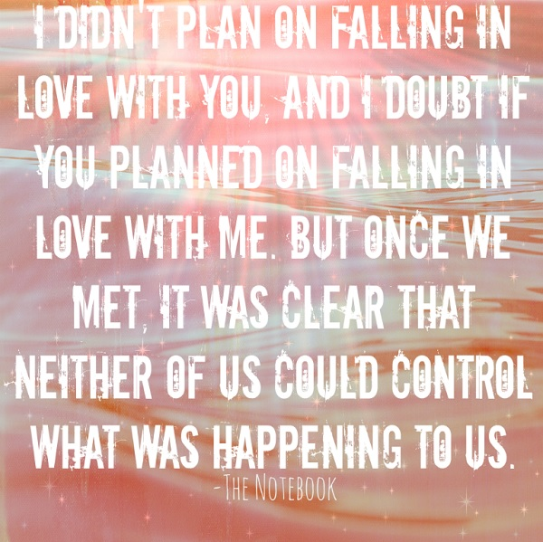 Quotes about falling in love - the notebook